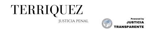 Justicia Transparente Pro